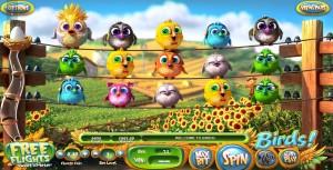 birds-slots